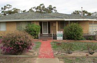 Picture of 45 Queen Street, Pingelly WA 6308