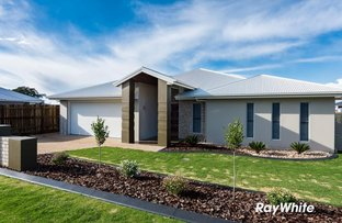 Picture of 11 Schneider Court, Middle Ridge QLD 4350