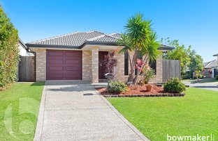 Picture of 17 Bellenden Street, North Lakes QLD 4509