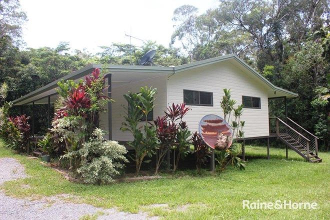 Picture of 6 Teak Road, Cow Bay, DAINTREE QLD 4873
