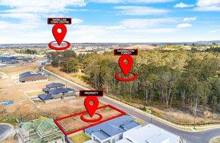 46 CASTLEMAINE CIRCUIT, Harrington Park NSW 2567