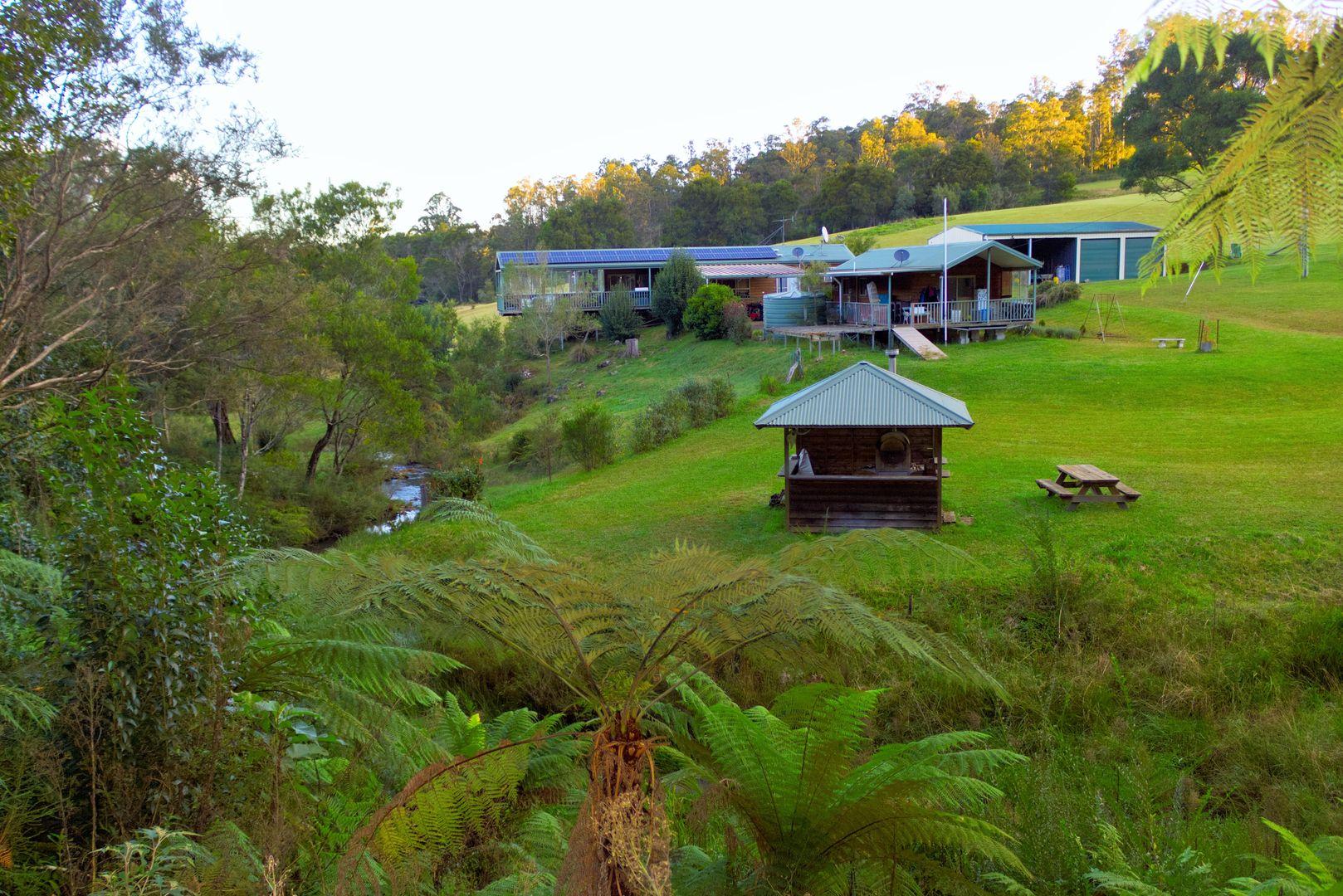 100 Schultz Road, Billys Creek, Dorrigo NSW 2453, Image 1