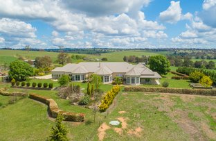 "Picture of ""Loloma""/127 Surveyors Creek Rd, Walcha NSW 2354"