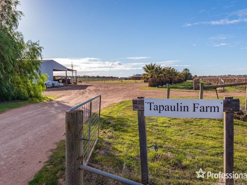 2756 Tapalin Mail Road, Euston NSW 2737, Image 0