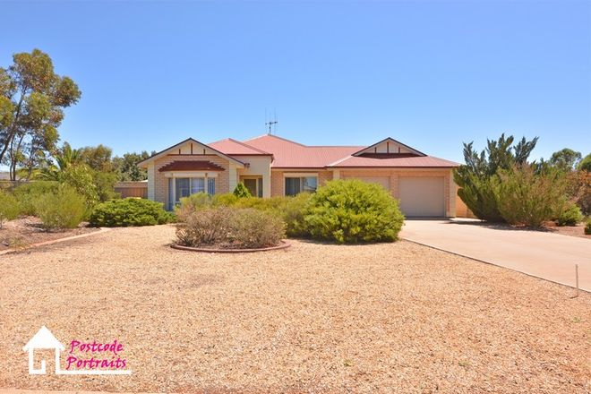 Picture of 7 Swagman Court, WHYALLA JENKINS SA 5609