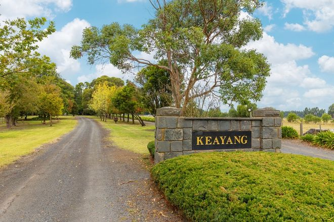 Picture of 6727 Princes Highway, TERANG VIC 3264