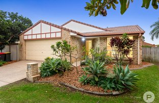 Picture of 7 Jarrah Place, Fitzgibbon QLD 4018
