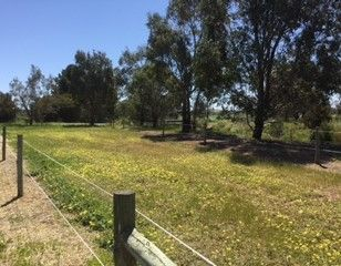 Lot 744 Truro Road, Moculta SA 5353, Image 2