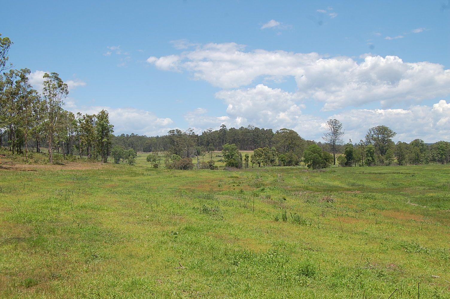 1695 Upper Mongogarie Road, Mongogarie NSW 2470, Image 2
