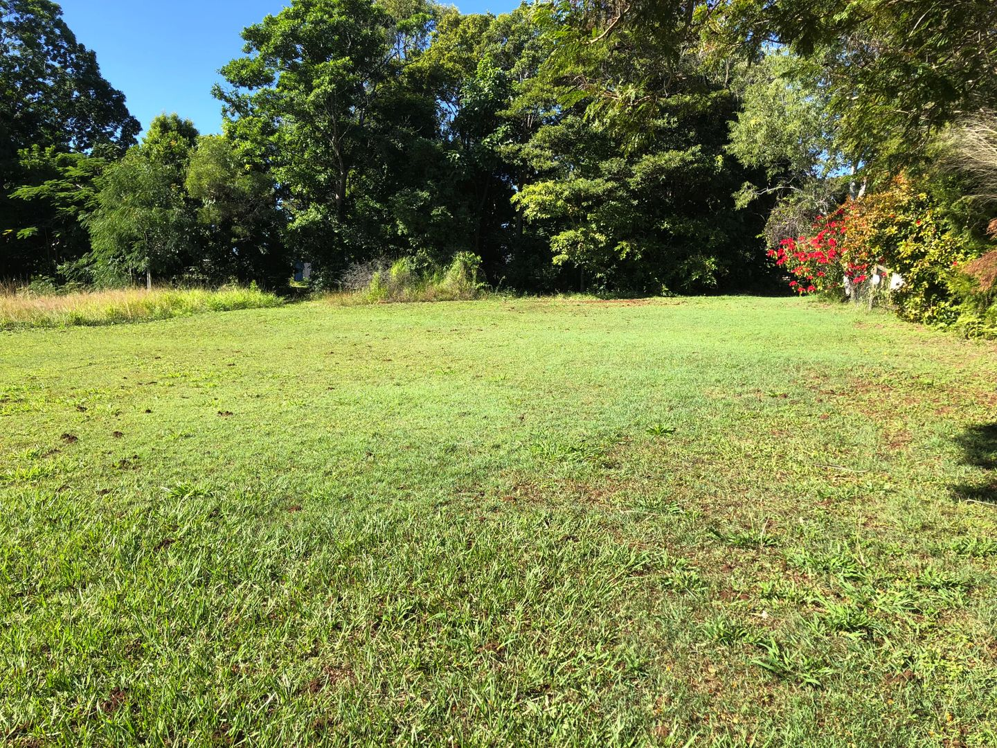 26 Curlew St, Macleay Island QLD 4184, Image 0