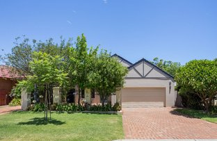 Picture of 8A Purdie Ave, Ardross WA 6153