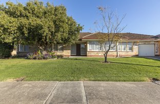 Picture of 54 Helmsdale Avenue, Glengowrie SA 5044