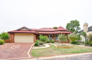 Picture of 32 Delonix Circle, Woodvale WA 6026
