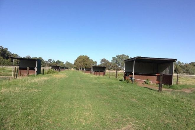 Picture of 352 Lowrie Road, THE PLAINS WA 6237