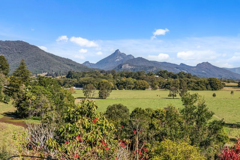 11 Mistral Road, South Murwillumbah NSW 2484, Image 1