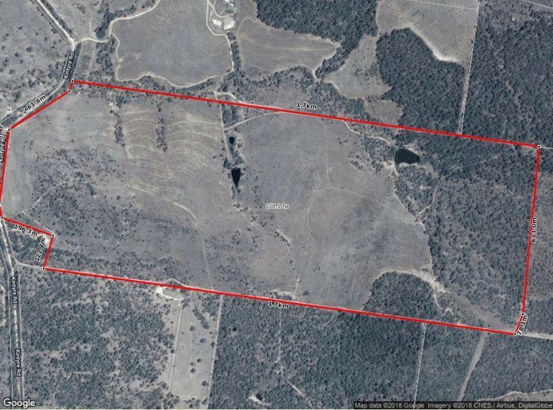 88 Kintyre Road, Cushnie QLD 4608, Image 1