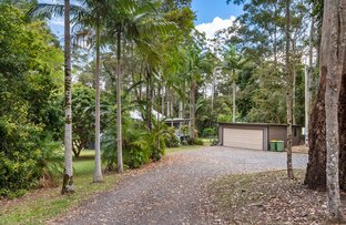 Picture of 2 Kelly Court, Lake Macdonald QLD 4563