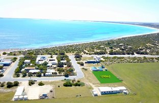 Picture of 5 East Terrace, Sceale Bay, Streaky Bay SA 5680