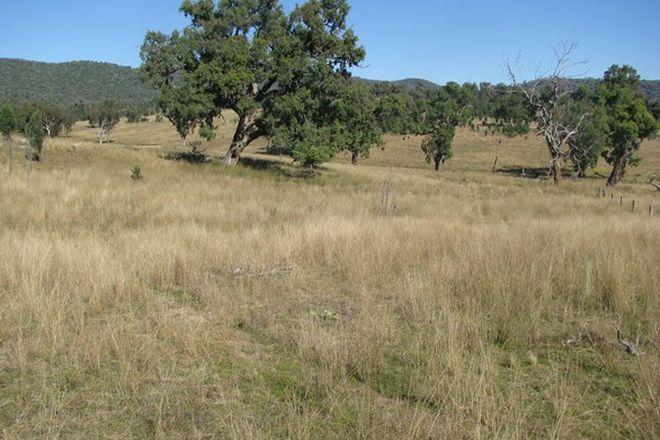 Picture of BUNDARRA NSW 2359
