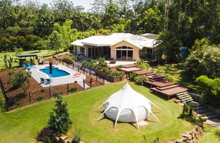 Picture of 43 Bamboo Road, Palmwoods QLD 4555