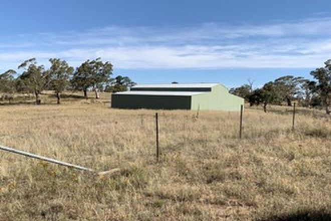 Picture of 367 Old Mill Road, DAIRYMANS PLAINS NSW 2630