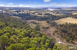 Picture of Flowery Gully Road, Flowery Gully TAS 7270