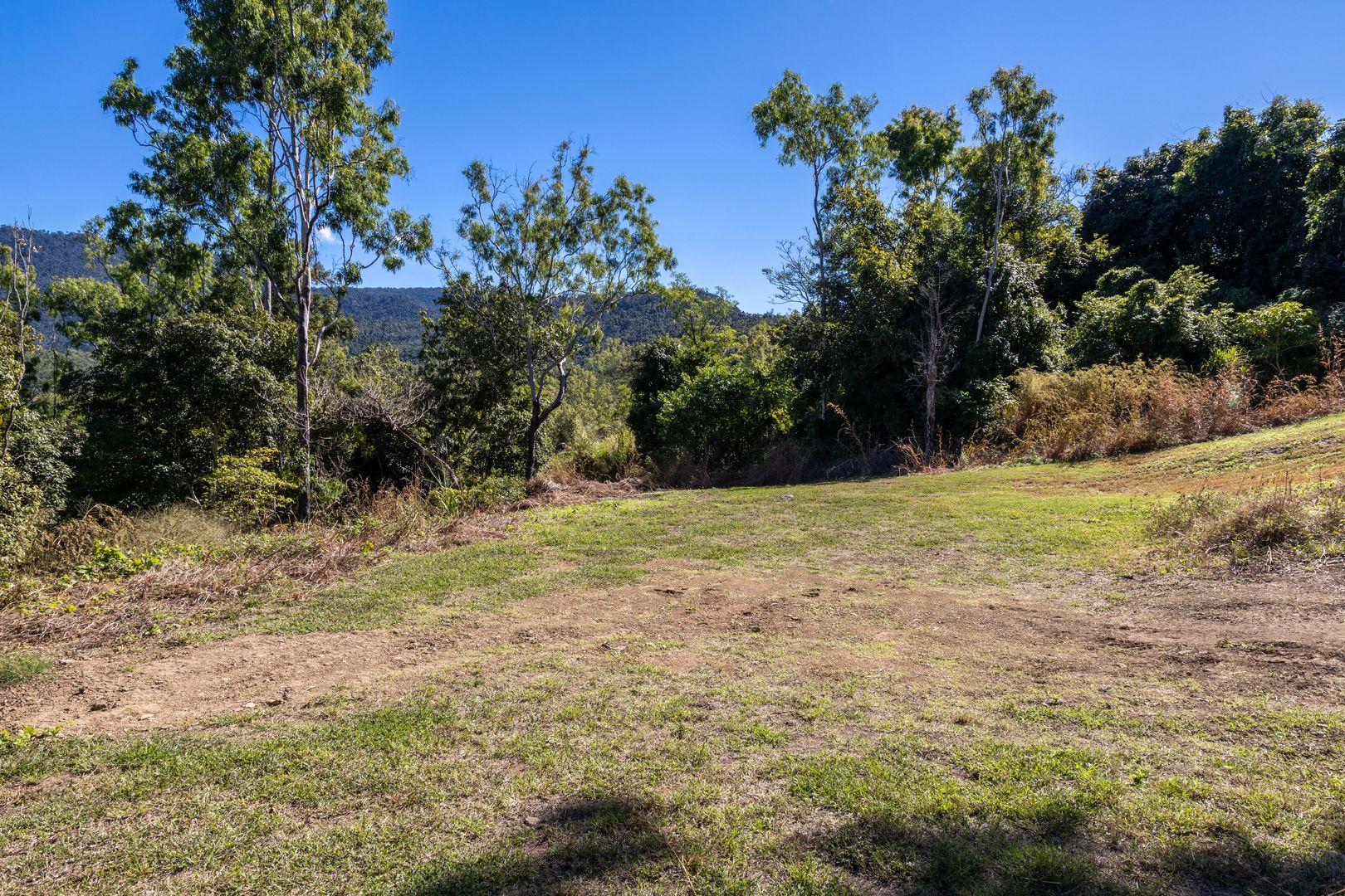 184 Tucker Road, Riordanvale QLD 4800, Image 1