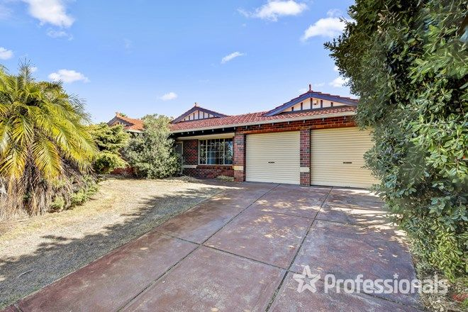 Picture of 45 Leicester Square, ALEXANDER HEIGHTS WA 6064