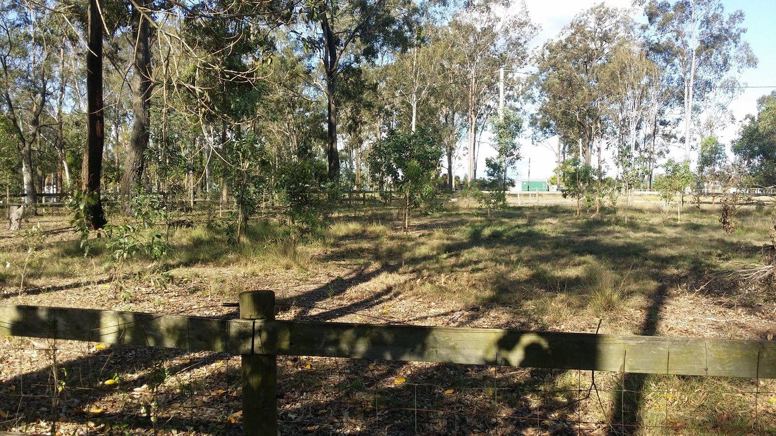Munruben QLD 4125, Image 2