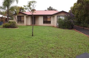 Picture of 1 Felicity Crt, Roma QLD 4455