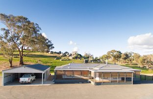 Picture of 470 Chillingworks Road, Young NSW 2594