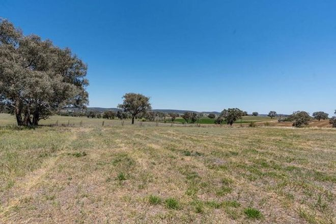 Picture of 168 Euchareena Road, MOLONG NSW 2866