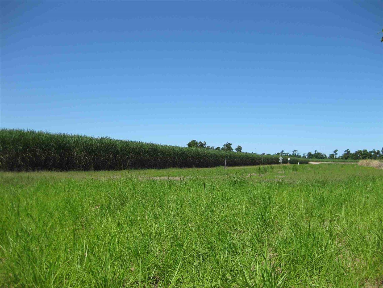 Silky Oak QLD 4854, Image 2