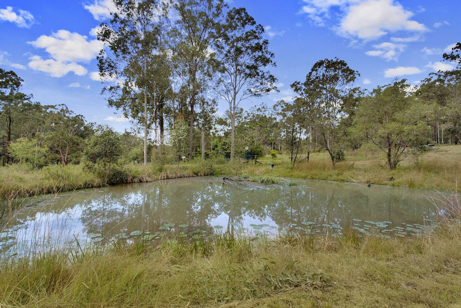 2124 Armidale Road, Willawarrin NSW 2440, Image 2