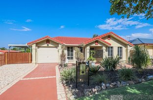Picture of 10 Coliban Court, Collingwood Park QLD 4301