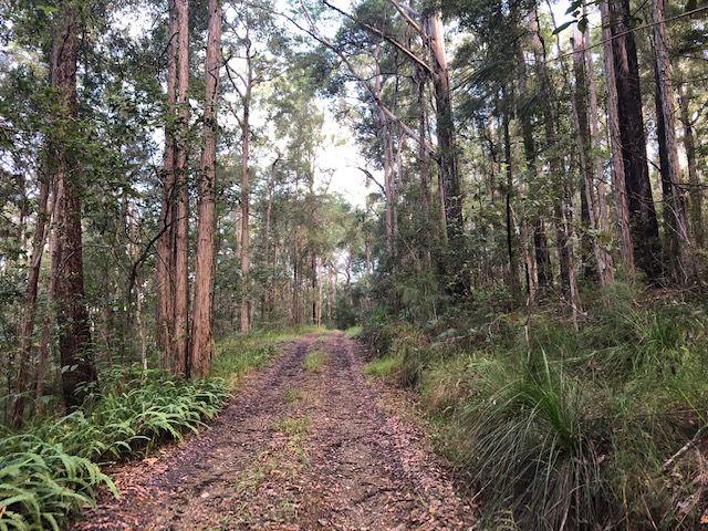 North Arm QLD 4561, Image 0