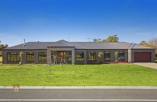 Picture of 84 Thomson Lane, Kinglake VIC 3763
