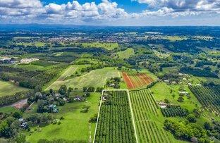 Picture of 633 Uralba Rd, Lynwood NSW 2477
