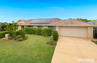 Picture of 31 Conley Avenue, Thornlands QLD 4164