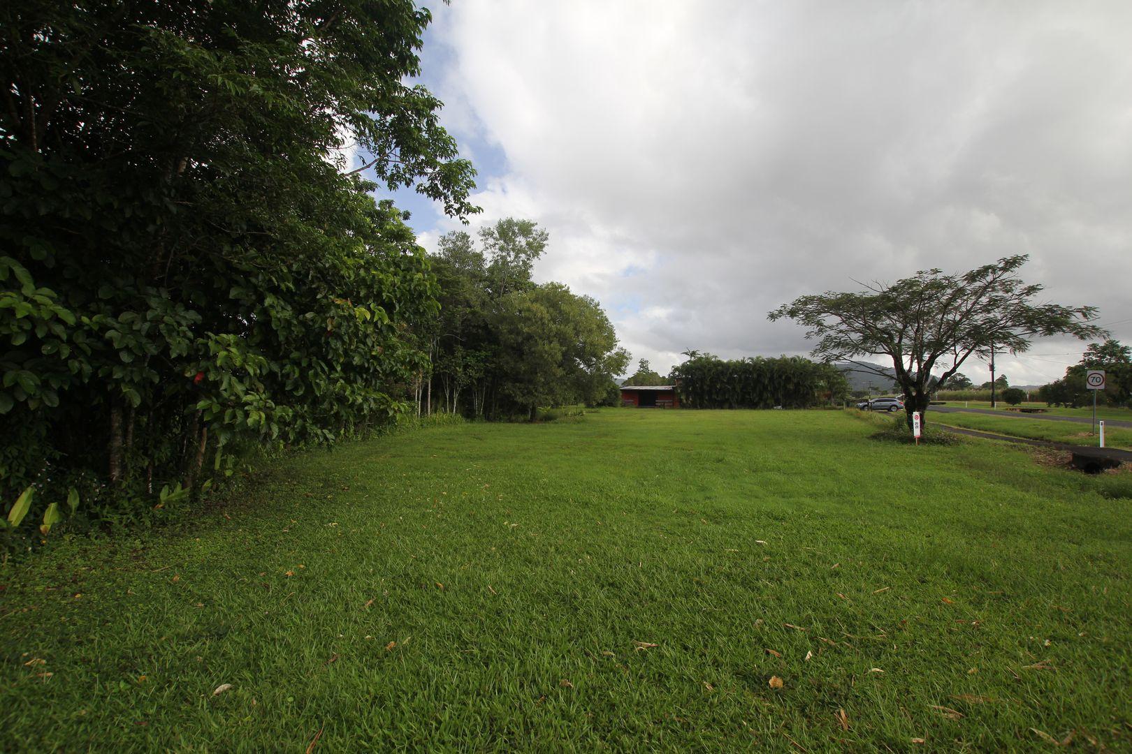 129 Silkwood Japoon Road, Silkwood QLD 4856, Image 2