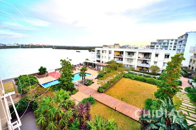 Picture of 646/46 Baywater Drive, WENTWORTH POINT NSW 2127