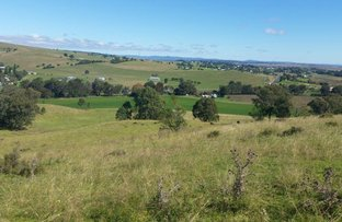 Picture of Killarney QLD 4373