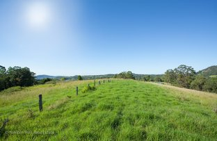 246 Billen Road, Nimbin NSW 2480