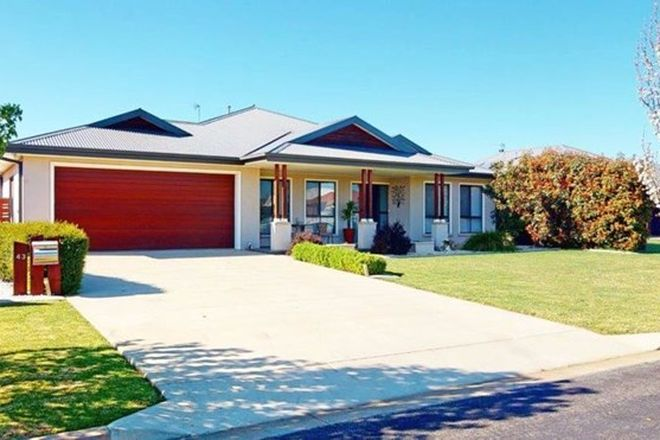 Picture of 43 Loughan Rd, JUNEE NSW 2663