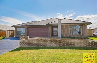 Picture of 7 Gaudry Street, The Oaks NSW 2570