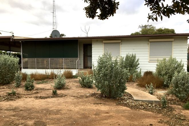 Picture of 5 Haines Street, WUDINNA SA 5652