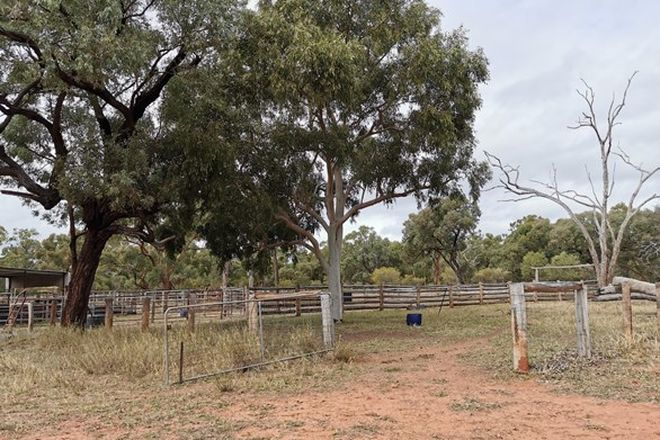Picture of TORRENS CREEK QLD 4816