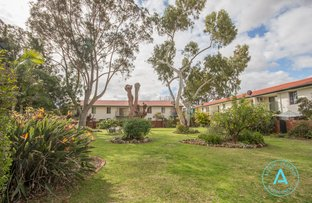 Picture of 6/379 Hector Street, Yokine WA 6060