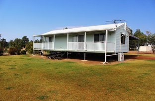 Picture of 1508 Carnarvon Highway, Roma QLD 4455