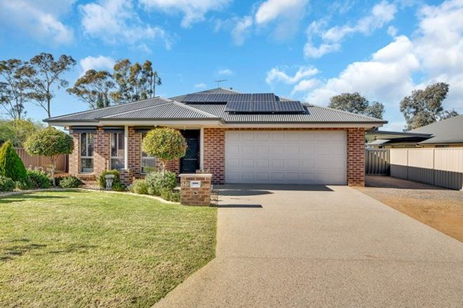 Picture of 40 Nicola Place, LAVINGTON NSW 2641